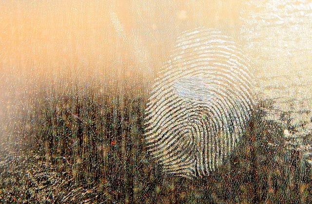皮脂の指紋