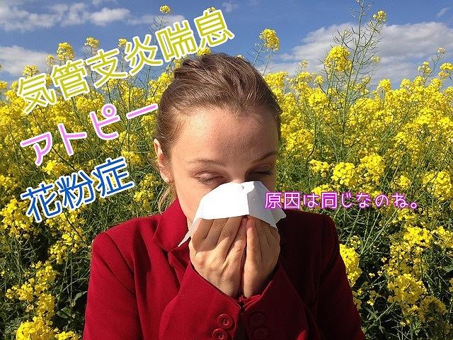 アレルギーの原因は同じ